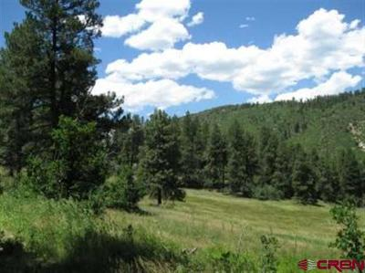 La Plata County Farm For Sale: Cr 501