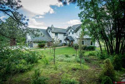 Pagosa Springs Single Family Home For Sale: 256 Jacobson