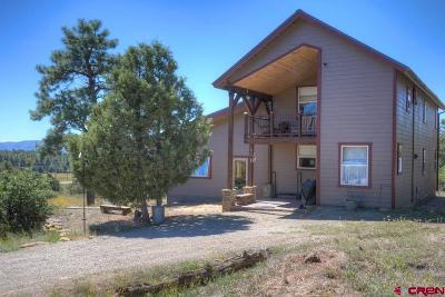 Mancos Single Family Home For Sale: 11835 Road 39.4