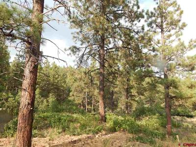 La Plata County Single Family Home For Sale: 93 Canyon Pines