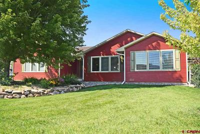 Montrose Single Family Home For Sale: 59311 Lupine