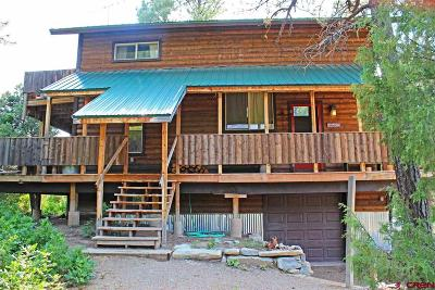 Mancos Single Family Home For Sale: 13480 Road 35.9