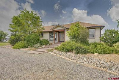 Durango Single Family Home For Sale: 380 Quarter Horse Road