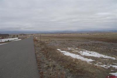 Delta Residential Lots & Land For Sale: 9 Sol Vista