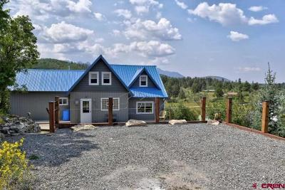 Ridgway Single Family Home For Sale: 2160 Aspen