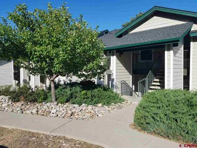 La Plata County Condo/Townhouse For Sale: 1100 Goeglein Gulch #135