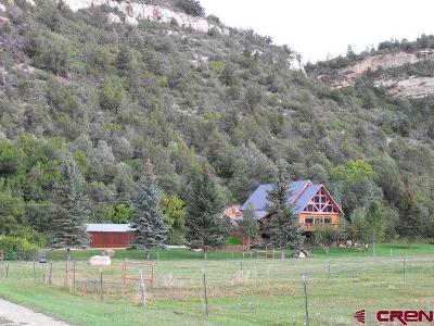 Dolores CO Single Family Home For Sale: $495,000