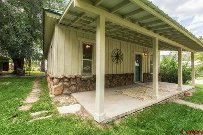 Paonia CO Single Family Home For Sale: $295,000