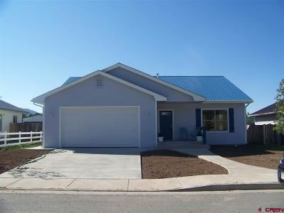 Mancos CO Single Family Home For Sale: $234,000