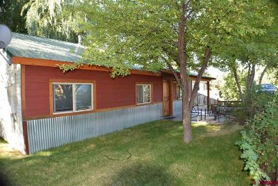 La Plata County Single Family Home For Sale: 398 North