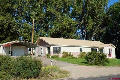 Dolores CO Single Family Home For Sale: $239,500