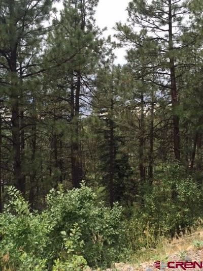 Bayfield CO Residential Lots & Land For Sale: $27,500