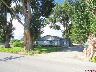 Delta CO Single Family Home For Sale: $149,500