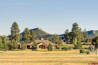 La Plata County Single Family Home For Sale: 307 Colonial