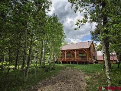 Mancos Single Family Home For Sale: 19500 Road 42