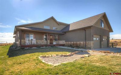 La Plata County Single Family Home For Sale: 214 Encantado