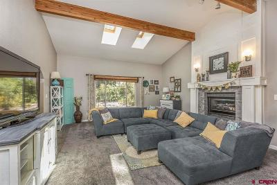 Durango Single Family Home For Sale: 1205 Oak