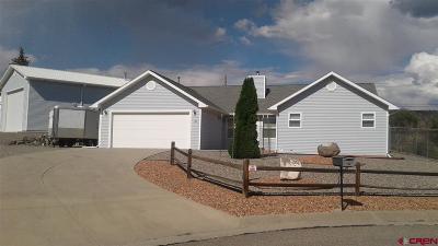 Cedaredge Single Family Home For Sale: 160 NE Juniper Court