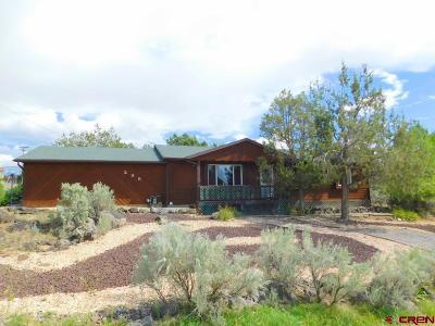 Cedaredge CO Single Family Home For Sale: $214,900