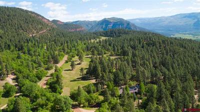 Durango Single Family Home For Sale: 47 Mason Cabin