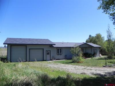 La Plata County Single Family Home For Sale: 150 N Appaloosa