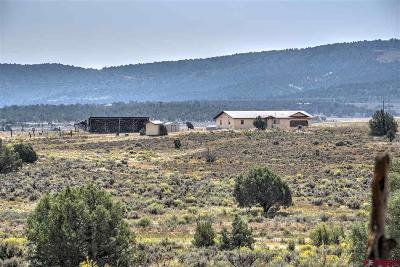 Ignacio Single Family Home For Sale: 4249 Cr 309a