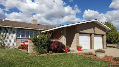 Dolores CO Single Family Home NEW: $260,000