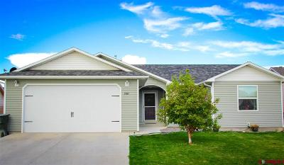 Delta CO Single Family Home For Sale: $195,900