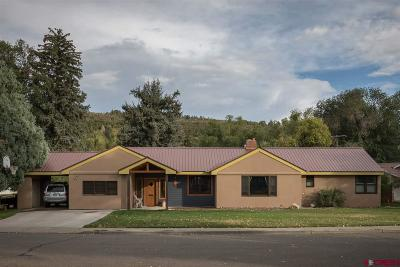 Durango Single Family Home NEW: 52 Animas