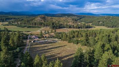 Bayfield CO Farm For Sale: $1,250,000