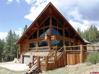 Pagosa Springs Single Family Home For Sale: 20201 W Us Hwy 160