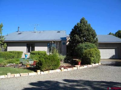 Dolores CO Single Family Home NEW: $319,500