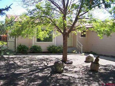 Cedaredge CO Single Family Home NEW: $200,000