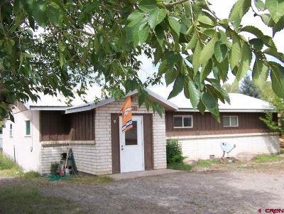 Del Norte Single Family Home For Sale: 1120 4th