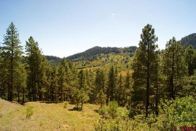 Durango Residential Lots & Land For Sale: 1737 Cr 245