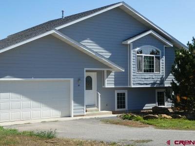 Pagosa Springs Single Family Home For Sale: 65 Gila Drive