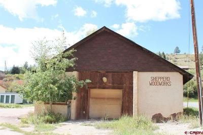Creede Single Family Home For Sale: 108 W Seventh Street