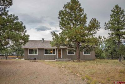 Durango Single Family Home NEW: 1589 Long Hollow