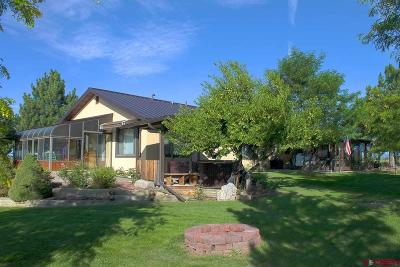 Durango CO Single Family Home NEW: $743,000