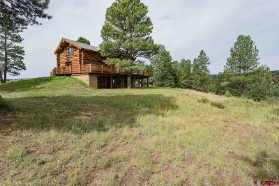 La Plata County Single Family Home For Sale: 16295 W Hwy 160