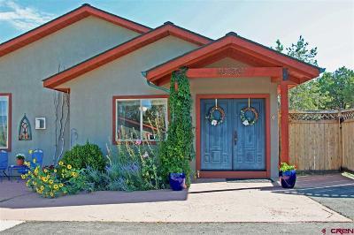 Durango Multi Family Home NEW: 84 Riverview Ranch