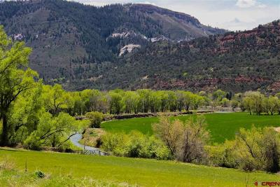 La Plata County Farm Back on Market: 27848 Hwy 550