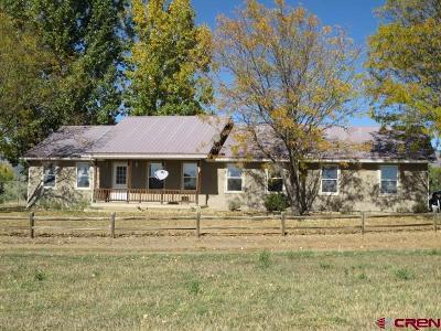 Cedaredge Single Family Home For Sale: 610 Brook