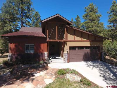 Durango Single Family Home For Sale: 320 Copper Rim Trail