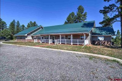 Durango Single Family Home NEW: 128 Colonial Dr