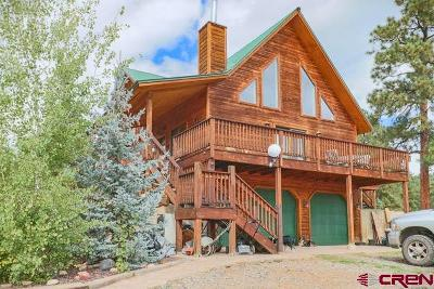 Pagosa Springs Single Family Home NEW: 869 E McCabe
