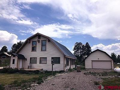 Pagosa Springs Single Family Home NEW: 46 Simi