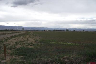 Delta CO Residential Lots & Land UC/Contingent/Call LB: $129,950