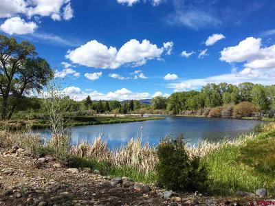 South Fork Residential Lots & Land For Sale: 437 County Road 50