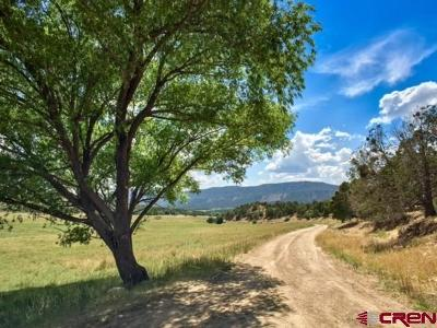 Mancos Single Family Home For Sale: 6392 Road 41